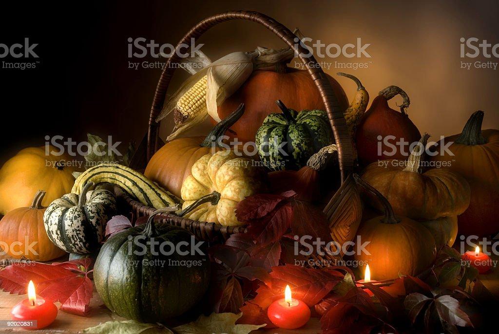 pumpkin stock photo