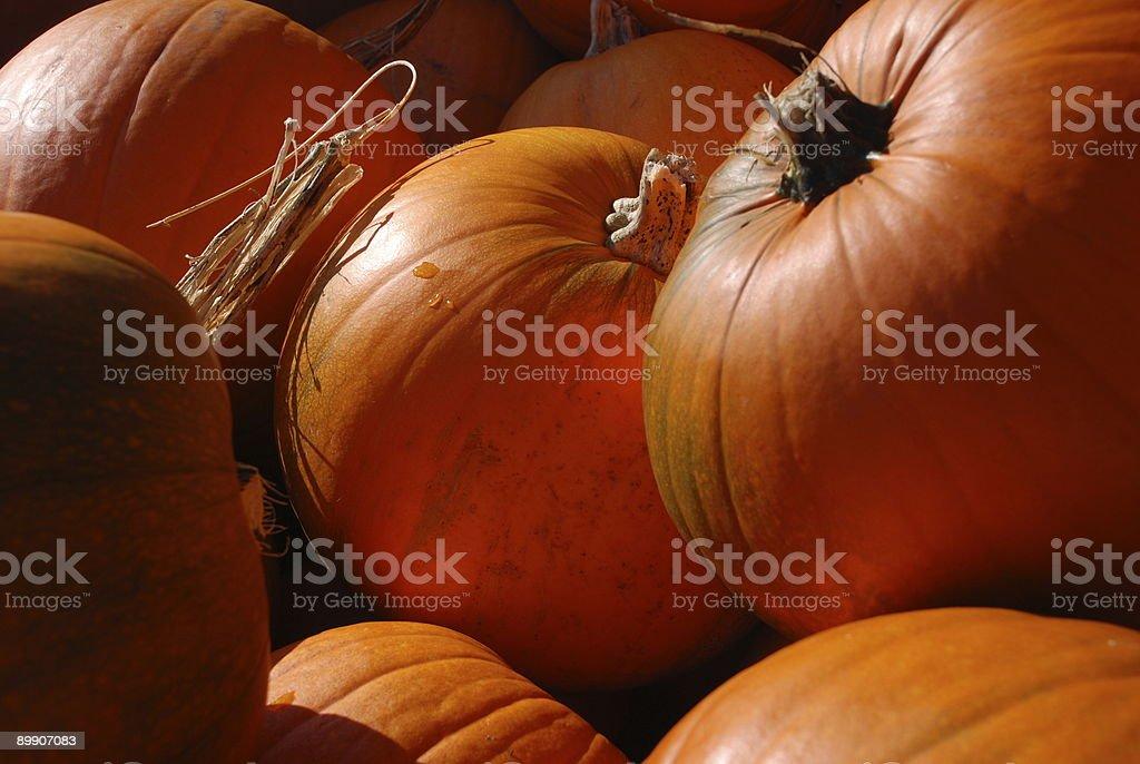 Pumpkin pile royalty-free stock photo