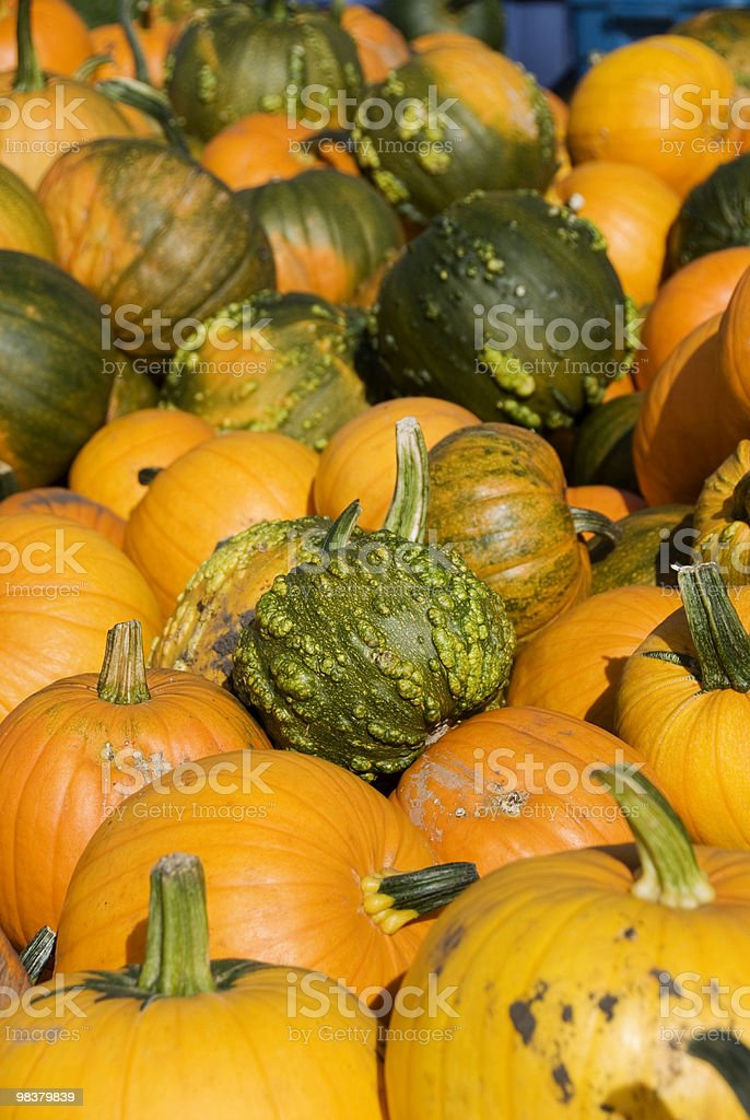 Pumpkin Pile royalty-free stock photo