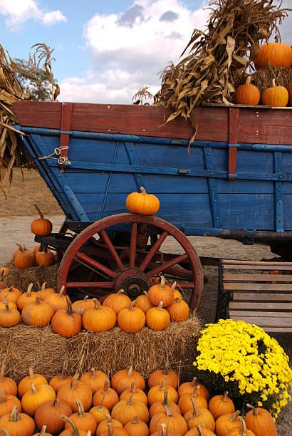 Pumpkin Ride stock photo