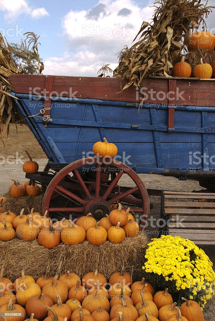 Pumpkin Ride stock photo