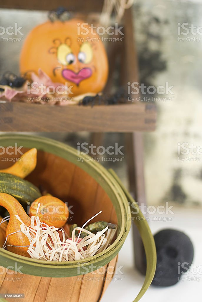 Pumpkin Squash royalty-free stock photo