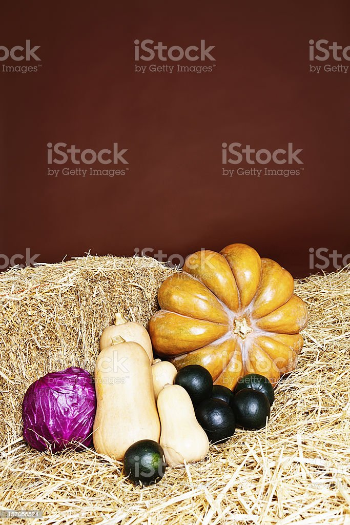 Pumpkin, squashes and red cabbage on straw at farmers market royalty-free stock photo