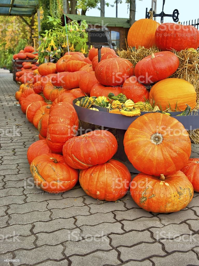 Pumpkin, stack of vegetables, Halloween royalty-free stock photo