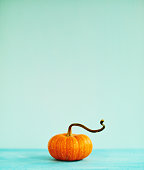 Pumpkin still life with teal background