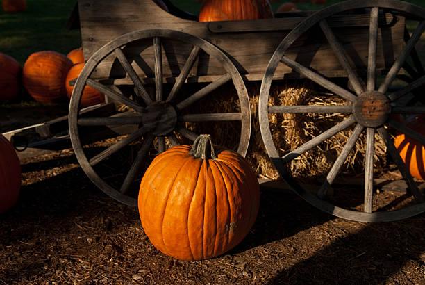 Pumpkin wagon wheel Farm Rustic Photo Autumn Fall Season stock photo