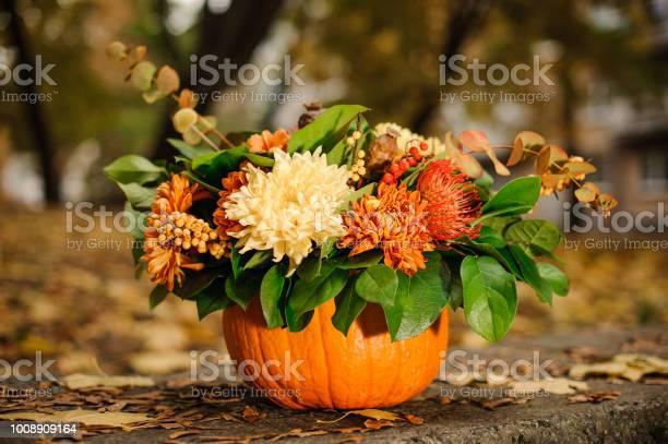 Pumpkin with a beautiful autumn flower composition picture id1008909164?b=1&k=6&m=1008909164&s=612x612&h=uh4avhvajuiizulp3ichff9tp4i3beij4tbbkpic4tg=