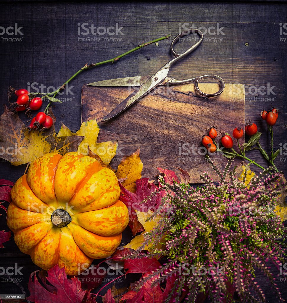 pumpkin with autumn leaves and flowers, scissors on rustic background stock photo