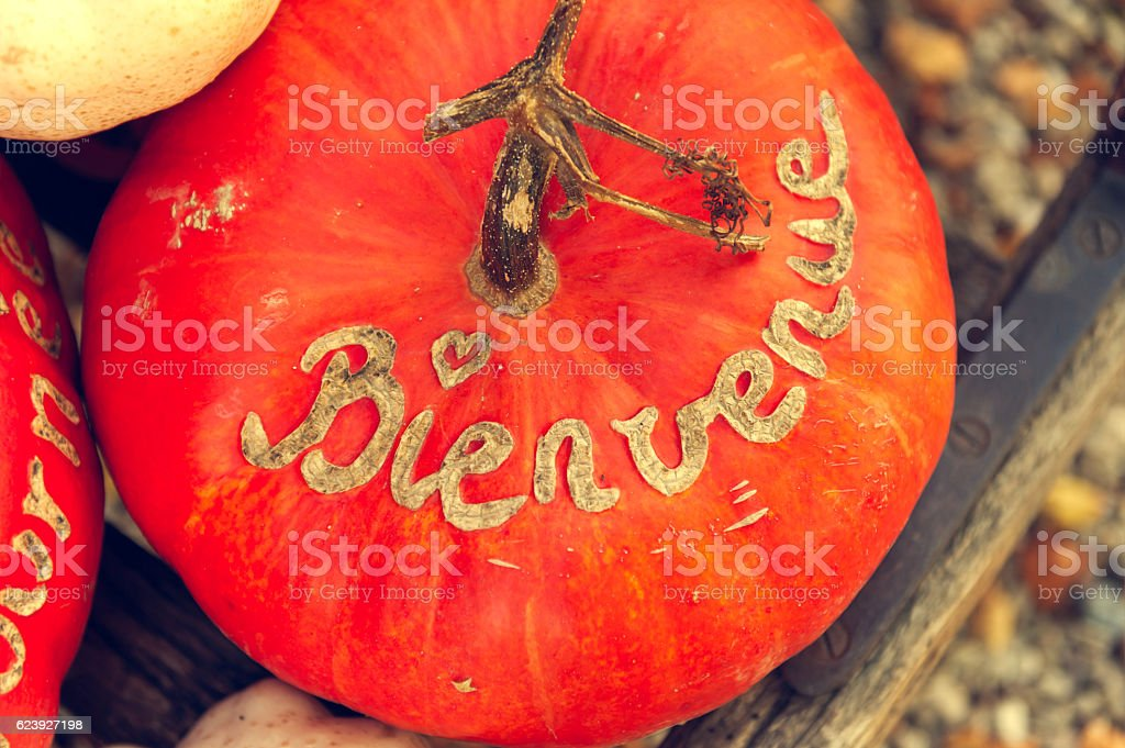 Pumpkin with french sign Bienvenue stock photo