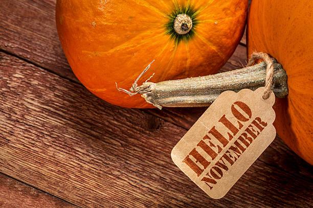 pumpkin with hello november tag - hello stock-fotos und bilder
