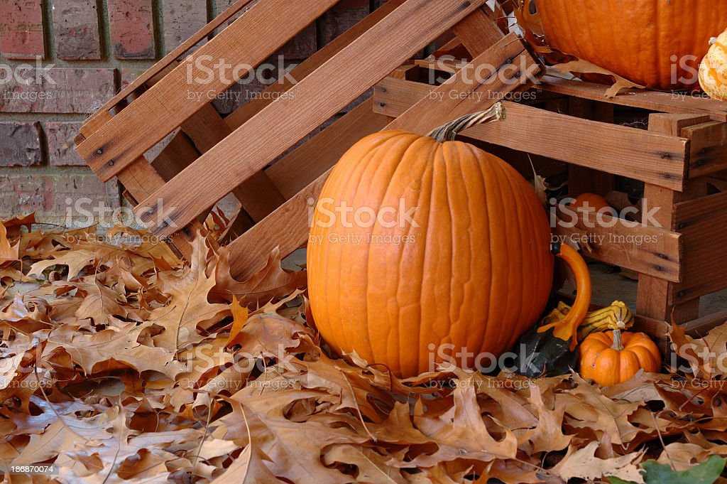 Pumpkins and autumn leaves on a porch royalty-free stock photo