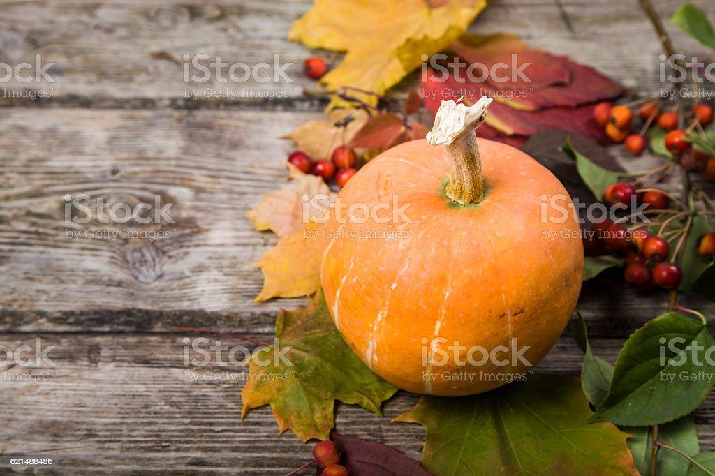Citrouilles et feuilles d'automne sur une table en bois photo libre de droits