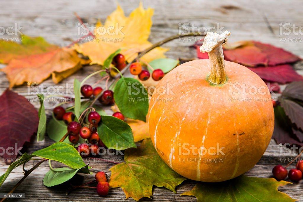 Kürbisse und Herbst Blätter auf einem Holztisch Lizenzfreies stock-foto