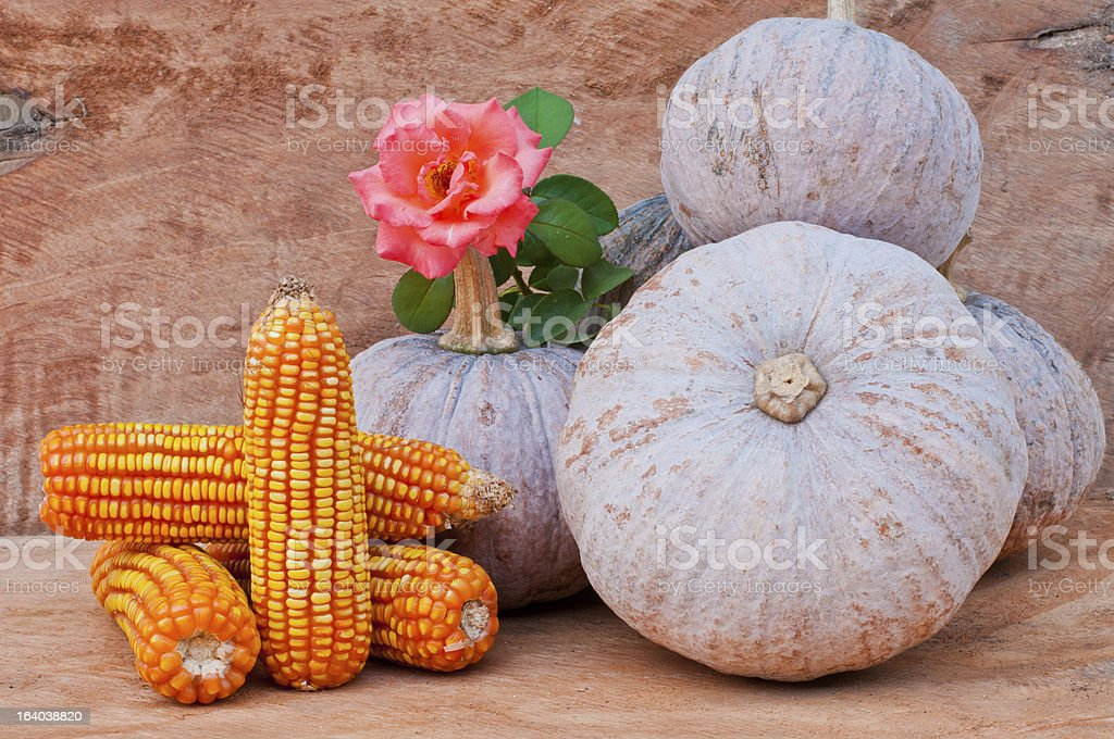 pumpkins and flowers royalty-free stock photo