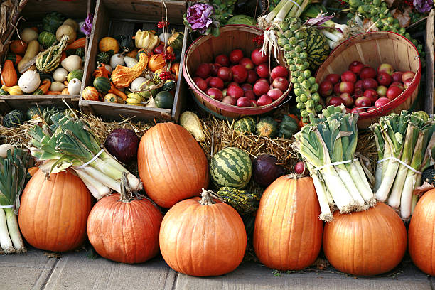 pumpkins and gourds at farmer's market. - landbouwbeurs stockfoto's en -beelden