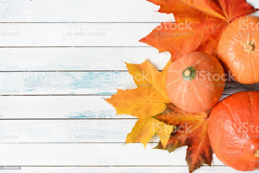 Pumpkins and maple leaf on old white table royalty-free stock photo