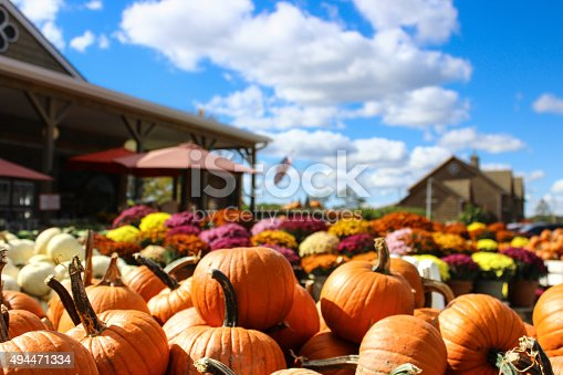 A pile of small orange pumkins rest in a woodedn box in from of a large display of colorful mums. The American Flag waves in the background with the blue sky being it.