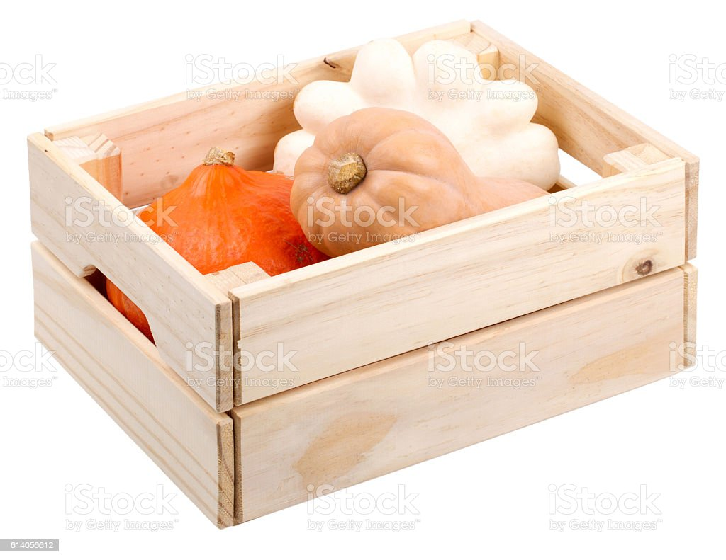 Pumpkins and pattypan squash in a wooden box are isolated stock photo