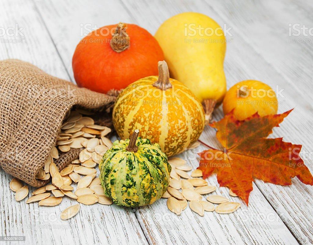 Pumpkins and seed zbiór zdjęć royalty-free