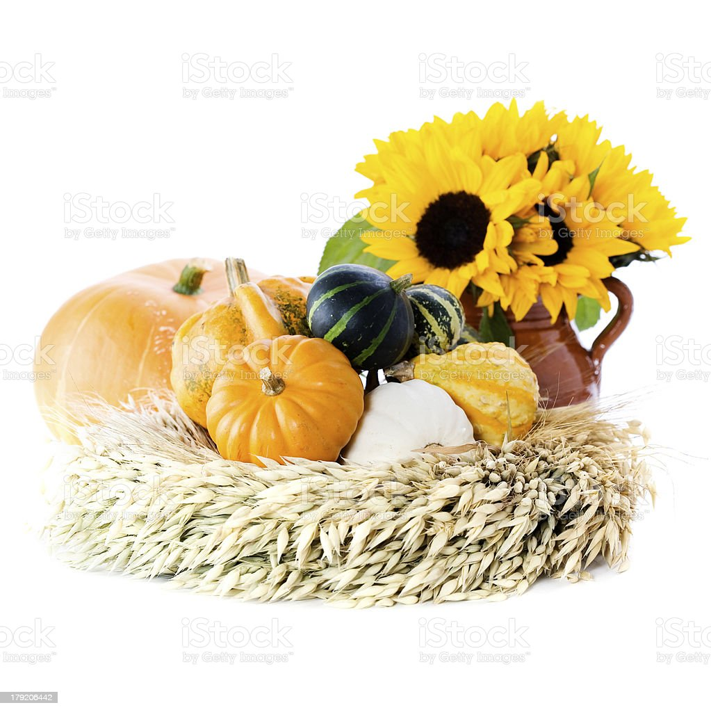 Pumpkins and sunflowers royalty-free stock photo
