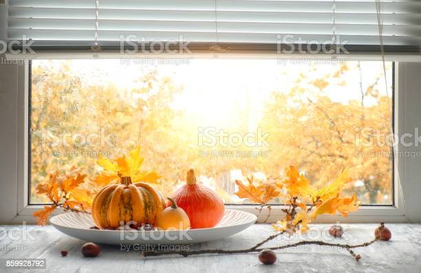 Photo of Pumpkins and yellow oak leaves by the window on a rainy day