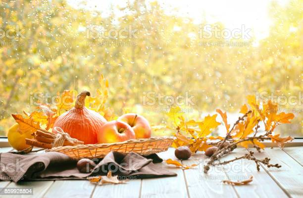 Photo of Pumpkins and yellow oak leaves on a window board on a rainy day