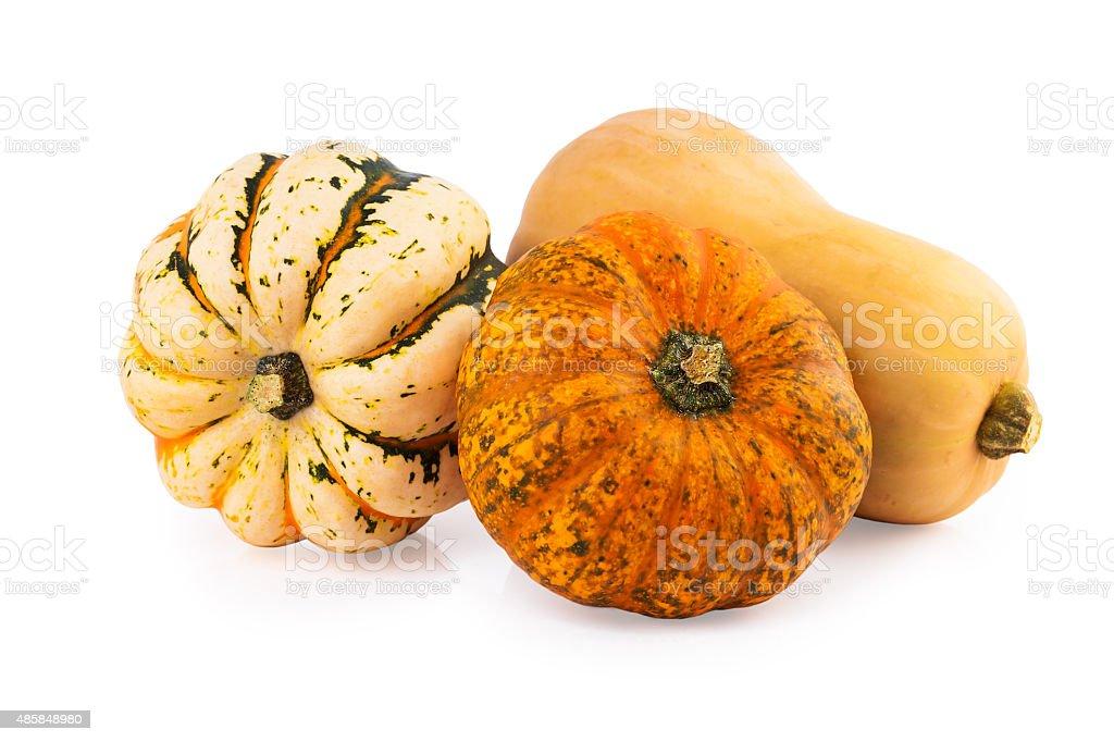 pumpkins assorted mix stock photo