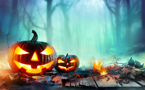 pumpkins burning in a spooky forest at night halloween background stock photo