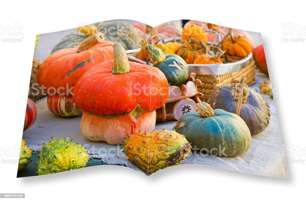 Pompoenen kookboek - 3D render concept beeld van een geopende fotoboek geïsoleerd op een witte achtergrond - ik ben de eigenaar van het auteursrecht van de beelden in deze 3D render gebruikt. - Royalty-free Afvallen Stockfoto