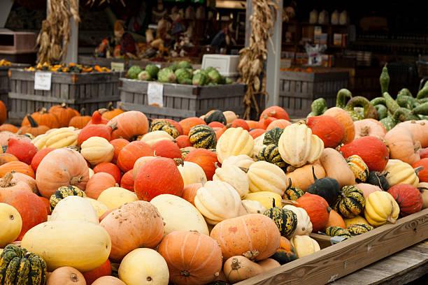 Pumpkins Gourds Farmers Market stock photo