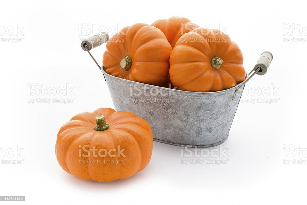 Pumpkins in a washbowl royalty-free stock photo