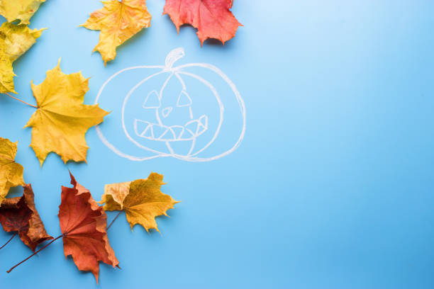 pumpkins in front of highlighted orange oak leaves pumpkins in front of highlighted orange oak leaves. halloween anhydrous stock pictures, royalty-free photos & images