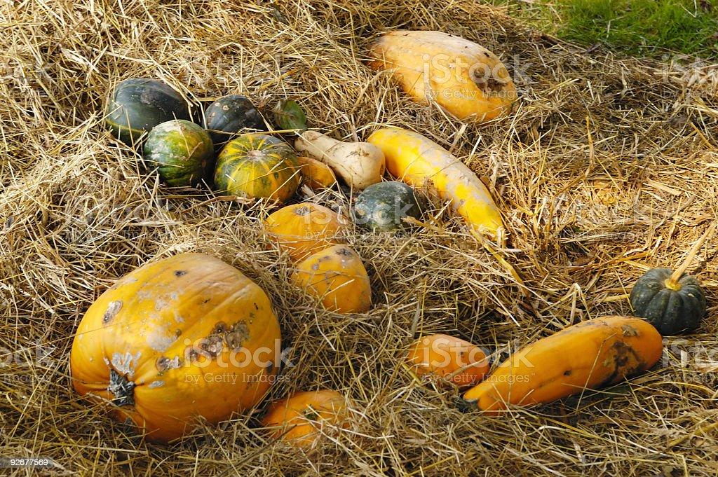 Pumpkins in hay royalty-free stock photo