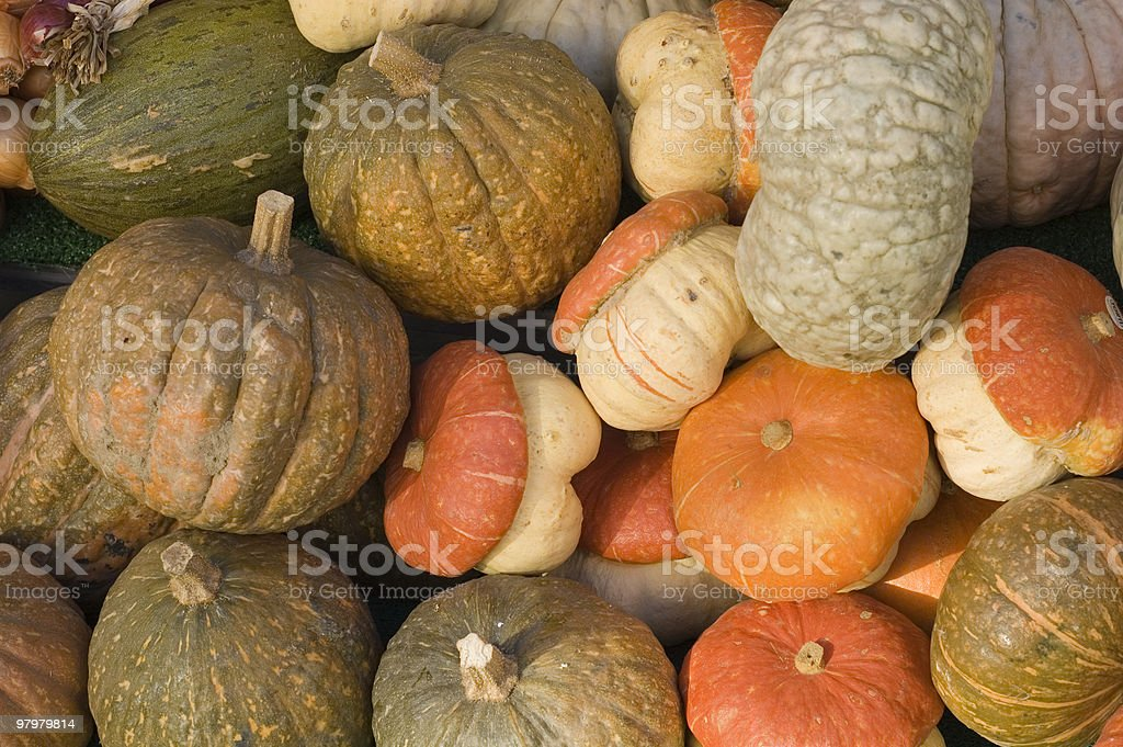 pumpkins in the market royalty-free stock photo