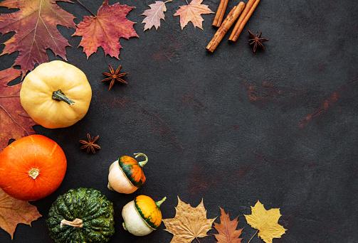 istock Pumpkins on a black background 1179505966