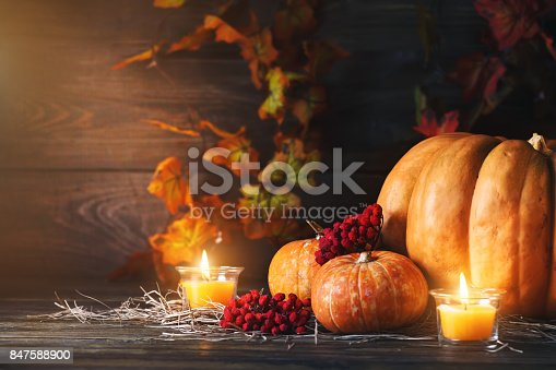 istock Pumpkins on a wooden table. Autumn still-life. Halloween 847588900
