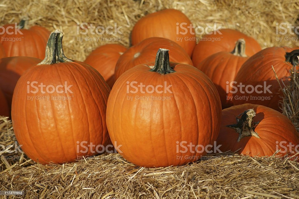 Pumpkins on Straw royalty-free stock photo