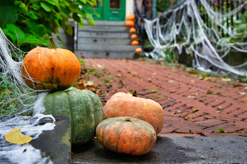 Pumpkins on the steps at the house.
