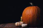 Several festive pumpkins on a table