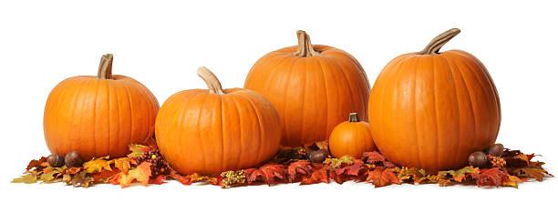 pumpkins - pumpkin stock photos and pictures
