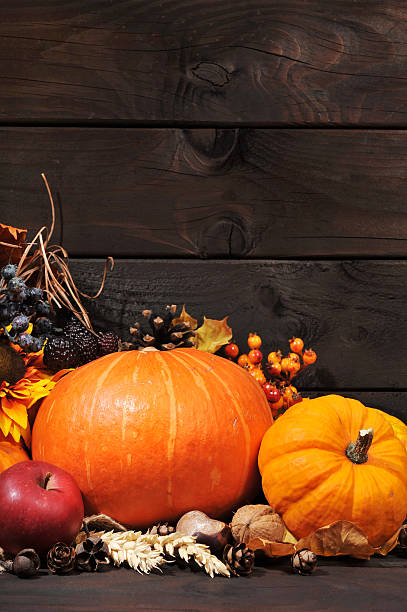 pumpkins Thanksgiving - different pumpkins with nuts, berries and grain in front of wooden boards anhydrous stock pictures, royalty-free photos & images