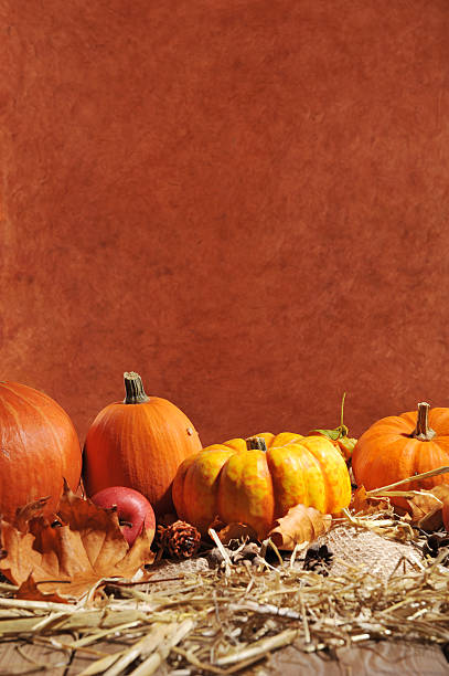 pumpkins Halloween - many different pumpkins on straw in front of brown background with copyspace anhydrous stock pictures, royalty-free photos & images