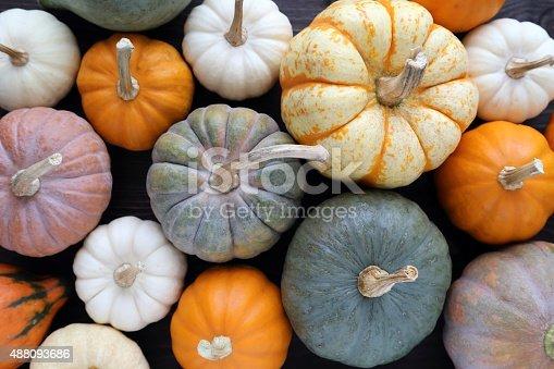 istock Pumpkins. 488093686