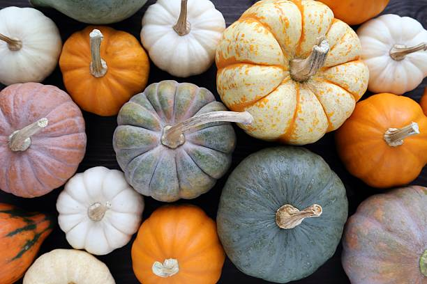 Pumpkins. Diverse assortment of pumpkins on a wooden background. Autumn harvest. pumpkin stock pictures, royalty-free photos & images