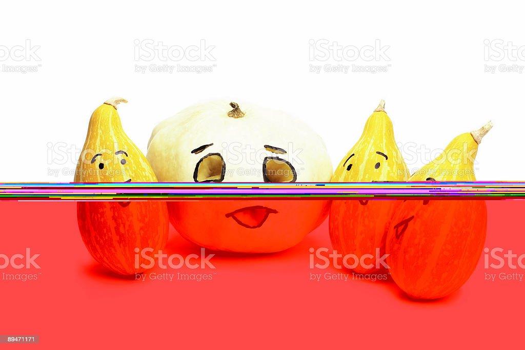 pumpkins Стоковые фото Стоковая фотография