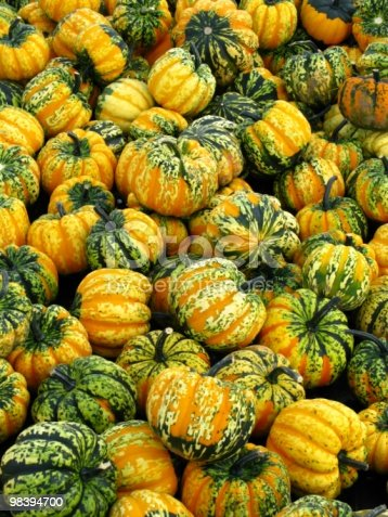 Pumpkins Stock Photo & More Pictures of Autumn