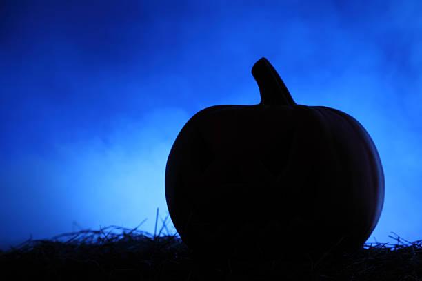 Pumpkin's silohuette on Hay stock photo