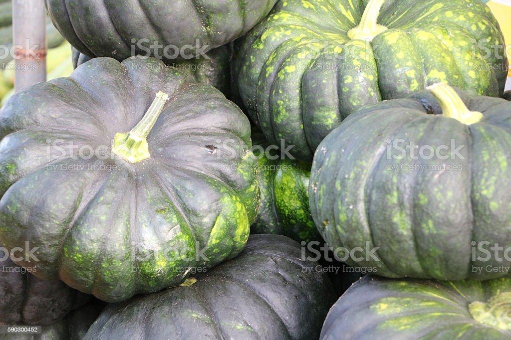 Pumpkins sold in the market royaltyfri bildbanksbilder