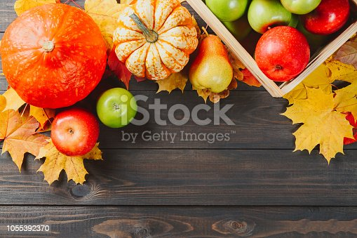 1020586746istockphoto Pumpkins with colorful maple leaves, ripe apples in a box and pear on dark wooden background. Autumn seasonal image with free space for your text 1055392370