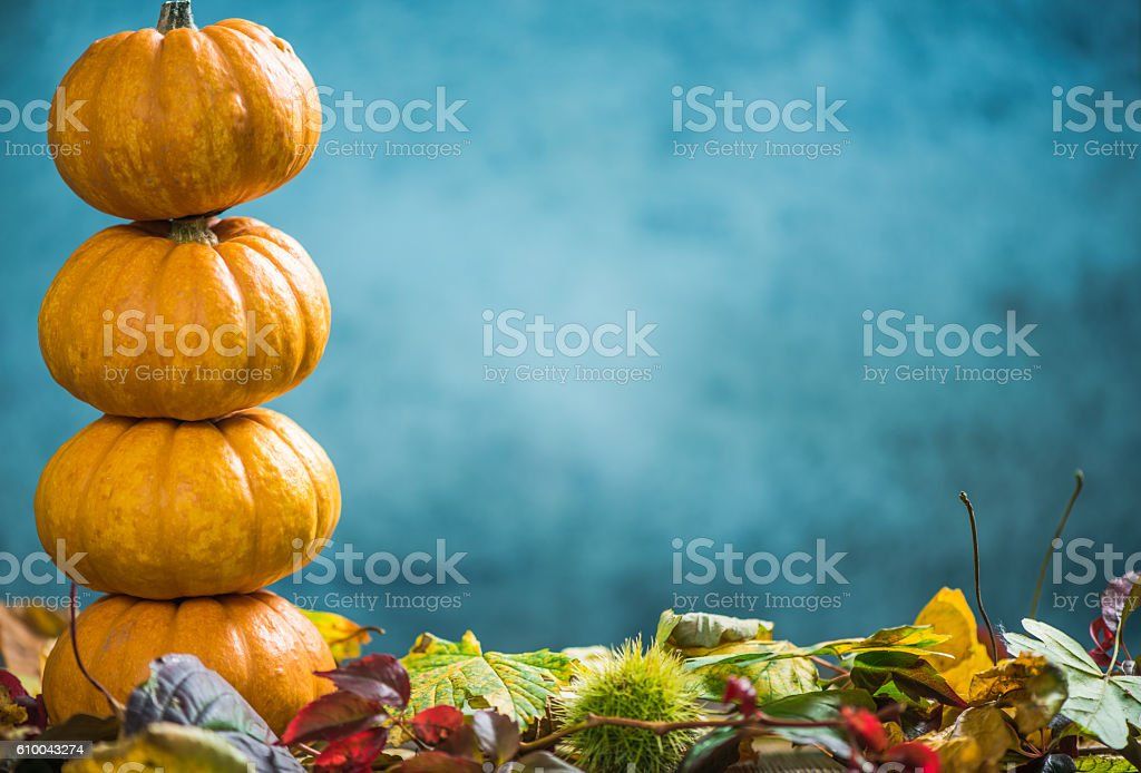 Pumpkins with fall background stock photo